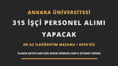Ankara Üniversitesi 315 İşçi Personel Alımı