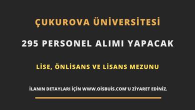 Çukurova Üniversitesi Sözleşmeli 295 Personel Alımı