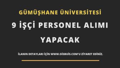 Gümüşhane Üniversitesi 9 İşçi Personel Alımı