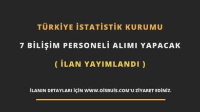 Türkiye İstatistik Kurumu 7 Bilişim Personeli Alımı