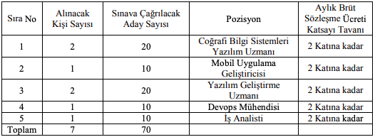 Türkiye İstatistik Kurumu 7 Bilişim Personeli Alımı Detayları