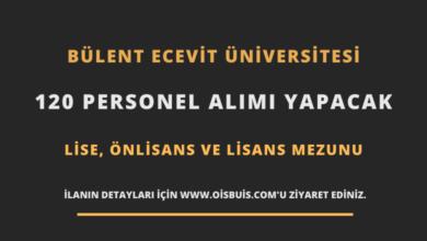 Zonguldak Bülent Ecevit Üniversitesi Sözleşmeli 120 Personel Alımı