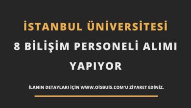 İstanbul Üniversitesi 8 Bilişim Personeli Alımı