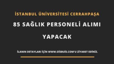 İstanbul Üniversitesi Cerrahpaşa 85 Sağlık Personeli Alımı