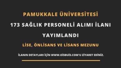 Pamukkale Üniversitesi Sözleşmeli 173 Sağlık Personeli Alımı
