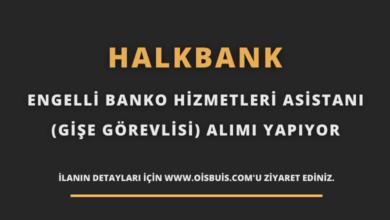 Halkbank Engelli Banko Hizmetleri Asistanı (Gişe Görevlisi) Alımı