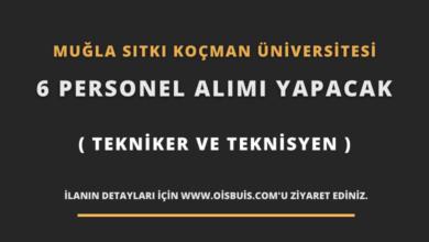 Muğla Sıtkı Koçman Üniversitesi 6 Personel (Tekniker ve Teknisyen) Alımı