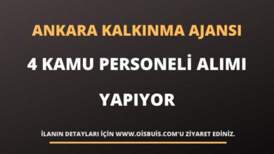 Ankara Kalkınma Ajansı 4 Personel Alımı Yapıyor