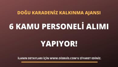 Doğu Karadeniz Kalkınma Ajansı 6 Kamu Personeli Alımı Yapıyor!