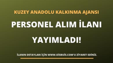 Kuzey Anadolu Kalkınma Ajansı Personel Alım İlanı Yayımladı!