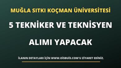 Muğla Sıtkı Koçman Üniversitesi 5 Tekniker ve Teknisyen Alımı Yapacak