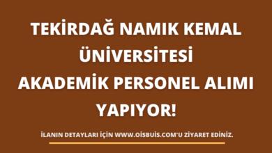 Tekirdağ Namık Kemal Üniversitesi Akademik Personel Alımı Yapıyor!