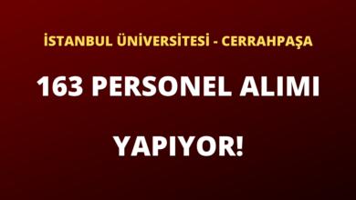 İstanbul Üniversitesi - Cerrahpaşa 163 Sözleşmeli Personel Alımı Yapıyor!