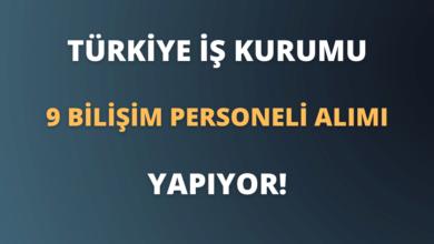 Türkiye İş Kurumu Sözleşmeli 9 Bilişim Personeli Alımı Yapıyor!