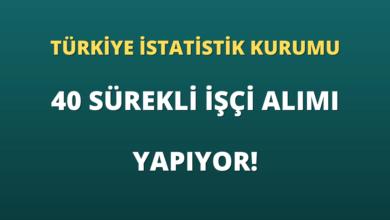 Türkiye İstatistik Kurumu Başkanlığı 40 Sürekli İşçi Alımı Yapıyor!