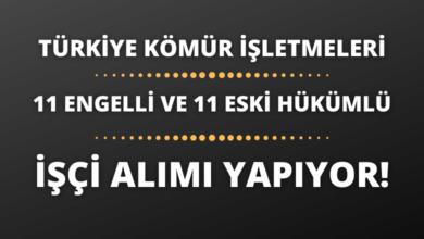 Türkiye Kömür İşletmeleri 11 Engelli ve 11 Eski Hükümlü İşçi Alımı Yapıyor!