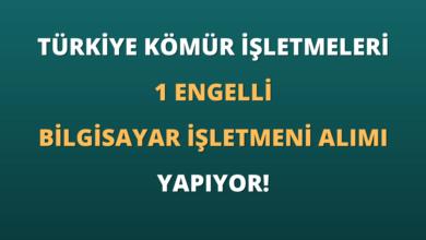 Türkiye Kömür İşletmeleri Kurumu 1 Engelli Bilgisayar İşletmeni Alımı Yapıyor!