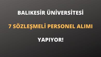 Balıkesir Üniversitesi 7 Sözleşmeli Personel Alımı Yapıyor!