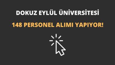 Dokuz Eylül Üniversitesi 148 Personel Alımı Yapıyor!