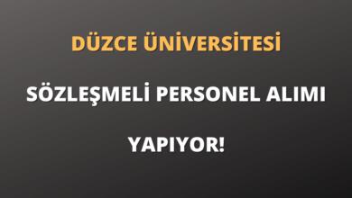 Düzce Üniversitesi Sözleşmeli 4 Hemşire Alımı Yapıyor!