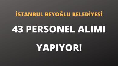 İstanbul Beyoğlu Belediyesi 43 Personel Alımı Yapıyor!