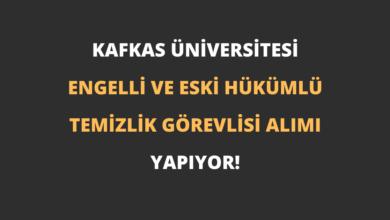 Kafkas Üniversitesi Engelli ve Eski Hükümlü Temizlik Görevlisi Alımı Yapıyor!