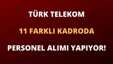 Türk Telekom 11 Farklı Kadroda Personel Alımı Yapıyor!