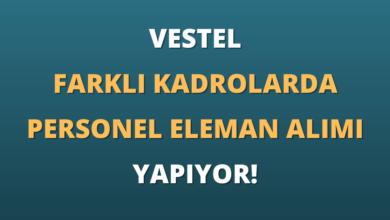 Vestel Farklı Kadrolarda Personel Eleman Alımı Yapıyor!