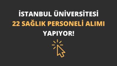 İstanbul Üniversitesi 22 Sağlık Personeli Alımı Yapıyor!