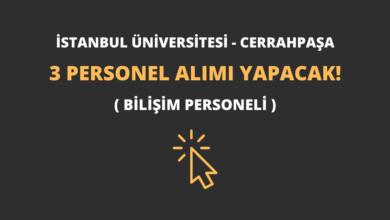 İstanbul Üniversitesi - Cerrahpaşa 3 Personel Alımı Yapacak!