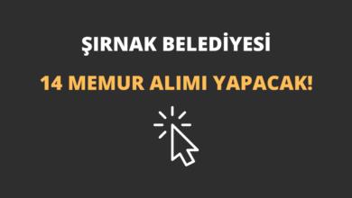 Şırnak Belediyesi 14 Memur Alımı Yapacak!