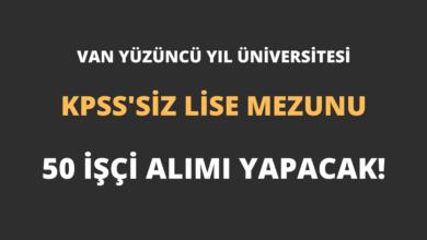 Van Yüzüncü Yıl Üniversitesi KPSS'siz Lise Mezunu 50 İşçi Alımı Yapacak!