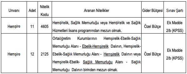 Zonguldak Bülent Ecevit Üniversitesi 23 Hemşire Alımı Detayları