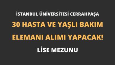 İstanbul Üniversitesi Cerrahpaşa 30 Hasta ve Yaşlı Bakım Elemanı Alımı Yapacak!