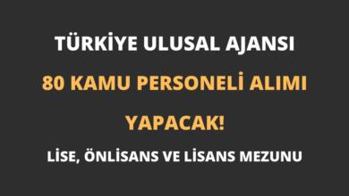 Türkiye Ulusal Ajansı 80 Kamu Personeli Alımı Yapacak!