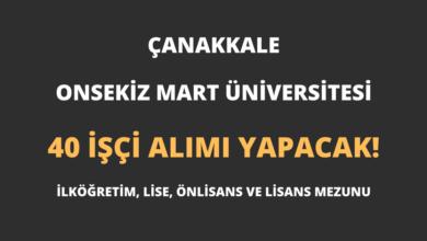 Çanakkale Onsekiz Mart Üniversitesi 40 İşçi Alımı Yapacak!