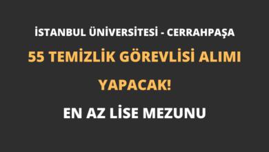 İstanbul Üniversitesi - Cerrahpaşa 55 Temizlik Görevlisi Alımı Yapacak!