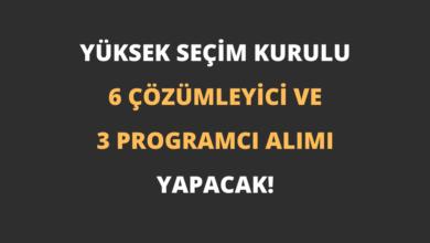 YSK 6 Çözümleyici ve 3 Programcı Alımı Yapacak!