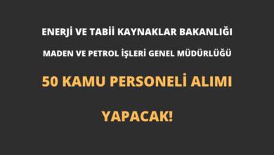 Maden ve Petrol İşleri Genel Müdürlüğü 50 Kamu Personeli Alımı Yapacak!