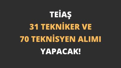 TEİAŞ 31 Tekniker ve 70 Teknisyen Alımı Yapacak!