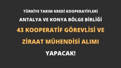 Türkiye Tarım Kredi Kooperatifleri Antalya ve Konya Bölge Birliği 43 Kooperatif Görevlisi ve Ziraat Mühendisi Alımı Yapacak!