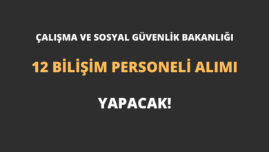Çalışma ve Sosyal Güvenlik Bakanlığı 12 Bilişim Personeli Alımı Yapacak!