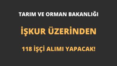 Tarım ve Orman Bakanlığı İŞKUR Üzerinden 118 İşçi Alımı Yapacak!