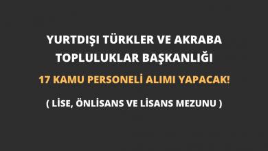 Yurtdışı Türkler ve Akraba Topluluklar Başkanlığı 17 Kamu Personeli Alımı Yapacak!